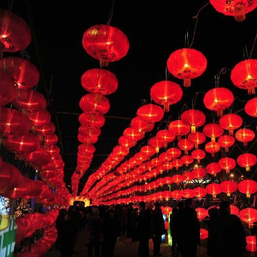 Enjoy Magnificent Lantern Displays