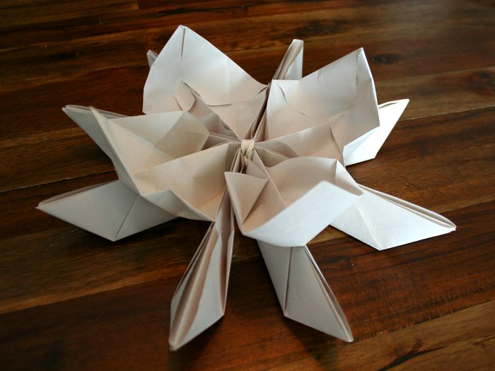 Origami Lotus paper Lantern white | Origami lotus flower, Useful ... | 525x700